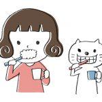 【抗菌作用】歯磨き粉・ヒノペリオを使ってみた感想